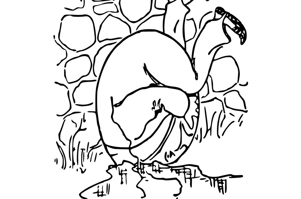 Brokenness: What If Humpty Dumpty Could Be Put Back Together?